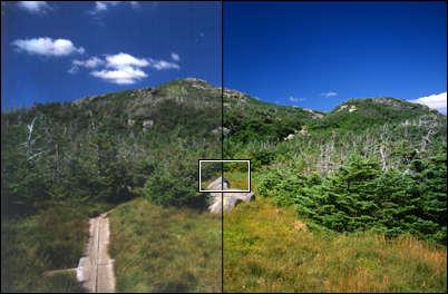 image003.jpg (20551 bytes)