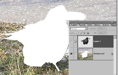 vrstvy-v-programe-phptpshop-0006 Práca s vrstvami v programe Photoshop